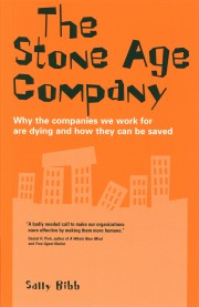 sally bibb the stone age company book cover image